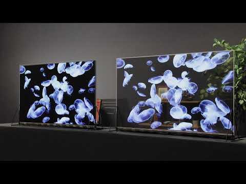 Transparent OLED Display Module | 透明有機ELディスプレイモジュール