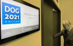 DOG 2021 (Bild: DOG)